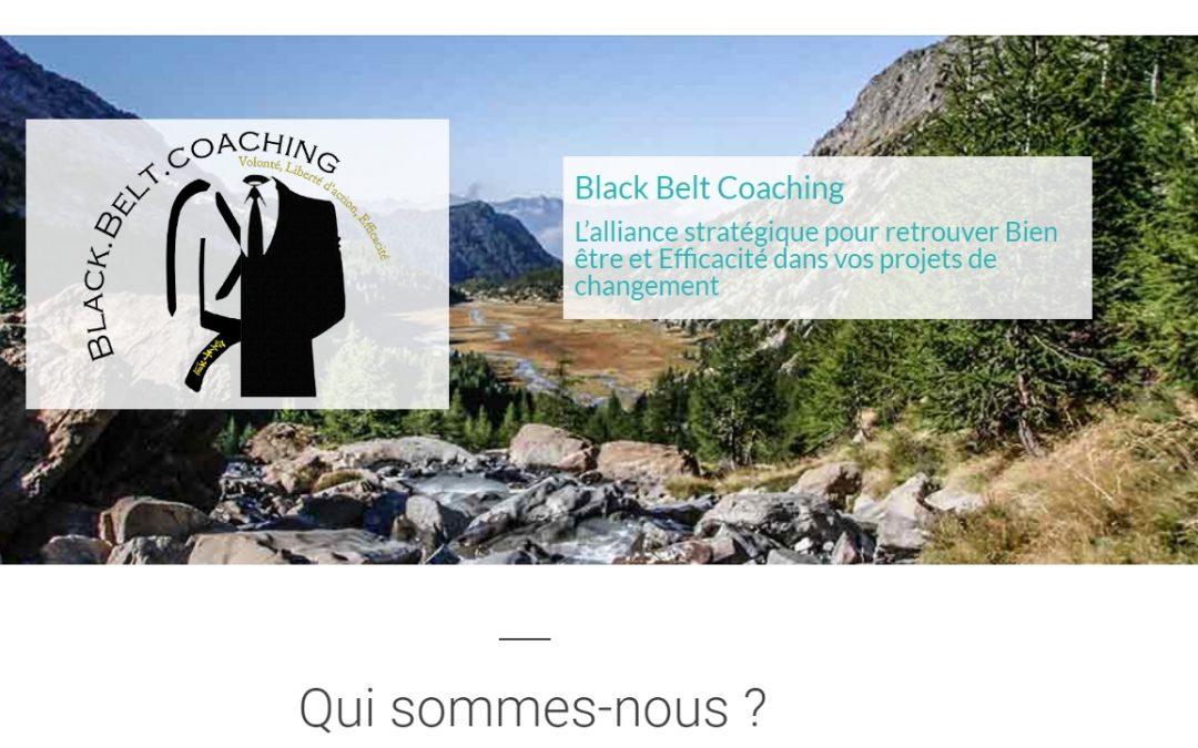 Black Belt Coaching pour retrouver bien-être et efficacité dans vos projets de changement